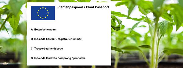 Afbeelding Plantenpaspoort 600x225