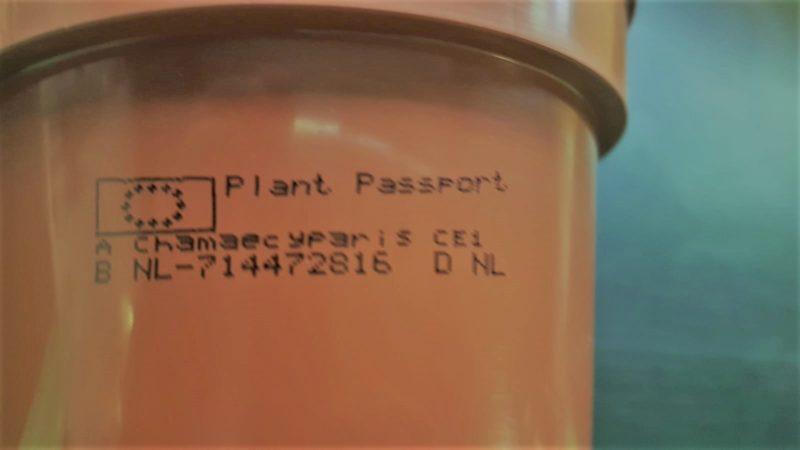 Plantpassport2